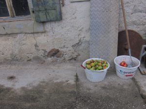 maison_corcelles_pommes