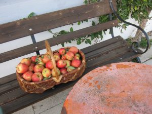 pommes_table